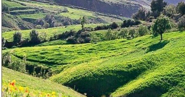 Beau Paysage De La Grande Kabylie D Algerie Paysage De Kabylie Paysage Algerie Paysage Oran
