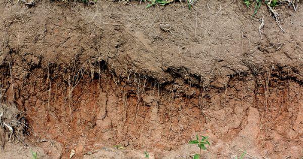 Subsoil The Soil Layer Beneath The Topsoil Soil Health Soil