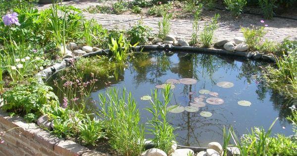 Afbeeldingsresultaat voor klein vijvertje mijn favoriete tuin pinterest fish ponds and gardens - Kleine tuin zen buiten ...