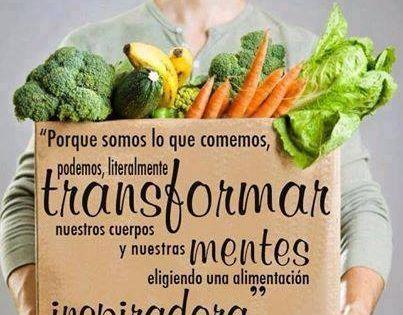Frases Doação De Alimentos: Hay Que Centrarse Hacia Una Alimentación óptima Para Una