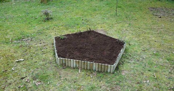 Cacher une souche d 39 arbre en cr ant un parterre jardin et maison potager pinterest gardens - Quand planter la lavande ...