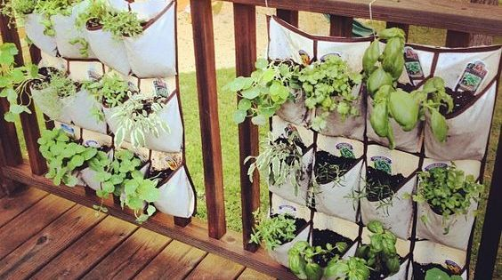 The Best Garden Ideas And Diy Yard Projects Hanging Shoe