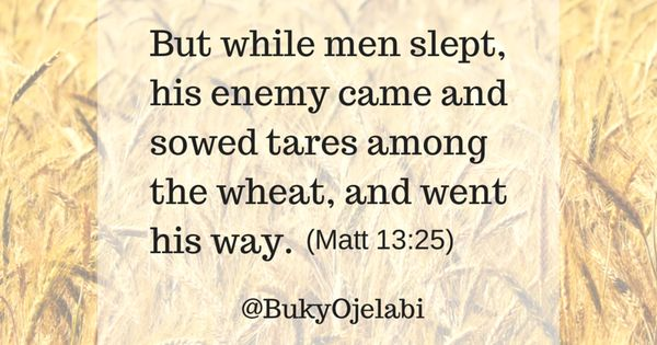 Image result for Matthew 13 vs. 25 - But while men slept, his enemy came and sowed tares among the wheat, and went his way.