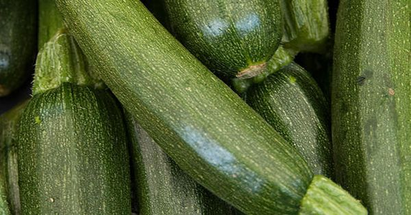 Learn when it's time to harvest specific vegetables with our ripeness guide.