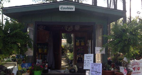 Bob Wines Camellia Gardens Ocala Fl Checkout Info House Nursery Pinterest