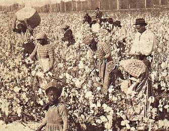 Slaves Picking Cotton In Georgia Credit To Jupiterimages African American Slavery African American History Slavery