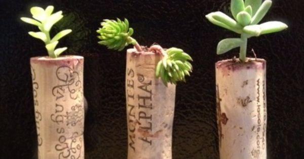 wine cork magnet succulent planters