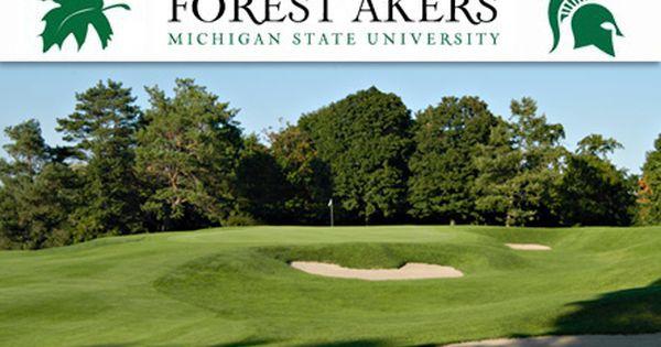 32++ Big met golf course cleveland ohio information