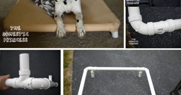 Pvc dog frame raised bed easy video instructions upcycle for Pvc cat bed