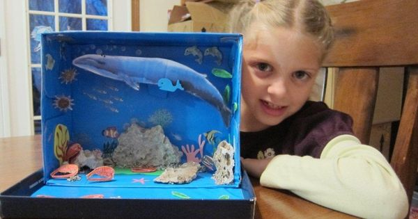 marine biome out of a shoebox just before thanksgiving