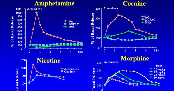 Effects of Drugs on Dopamine release, showing dopamine