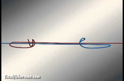 How to tie the double uni knot strongest fishing knots for Strongest fishing knots