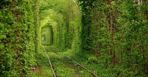 """Tunnel Of Love"" -Kleven, Ukraine. travel place for vacation 1- 10 Beautiful"