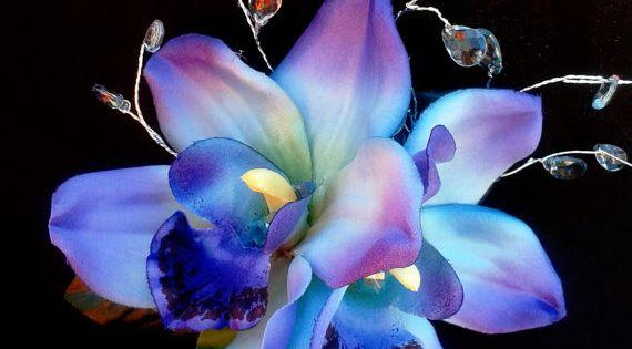 Maui Blue Hawaiian flowers