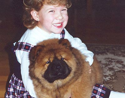 The Chow Chow Is A Well Mannered Dog Quite Good With Children