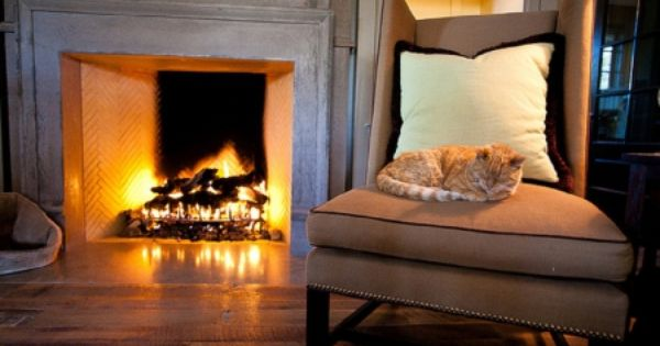 Fireplace Cats Cat By The Fireplace Cats Animals Background