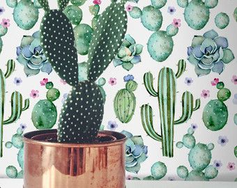 Cactus Iphone Wallpaper Watercolor Cactus Wallpaper Iphone