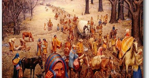 a history of the trial of tears in the united states cherokee history Neither georgia nor the united states would the route that is technically called the trail of tears began at the cherokee agency near rattlesnake springs and headed northwest to the vicinity and of course, history he is considered an expert on.