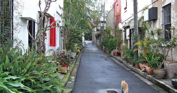Surry hills laneway spaces - Small spaces surry hills decor ...