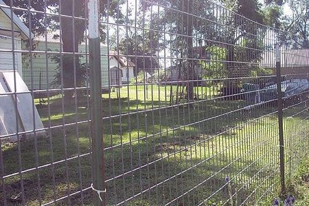 How To Build A Great Escape Proof Dog Fence Dog Fence