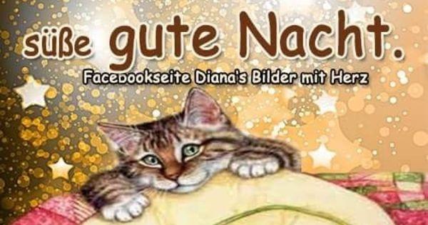 Bis Morgen 197 Gbpicsbilder Com Gute Nacht Nacht Gute Nacht Freunde