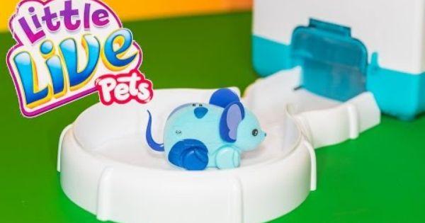 Little Live Pets Lil Mouse House A Little Live Pets Video Toy