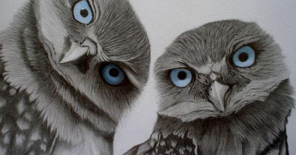 Owl, Papéis de parede and Doce on Pinterest