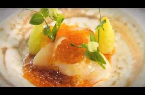 tecnicas de emplatado gourmet pdf free