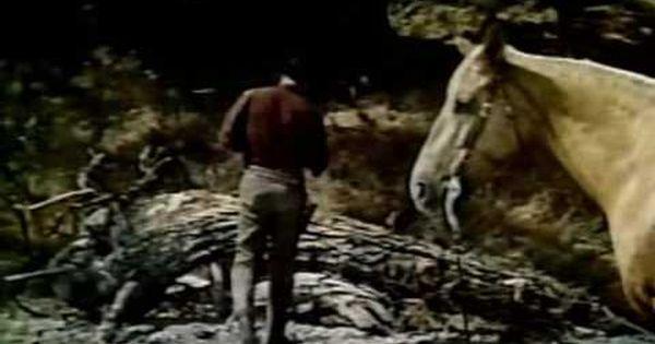 A Caravana Da Morte Dublado 1955 Com Imagens Filmes De
