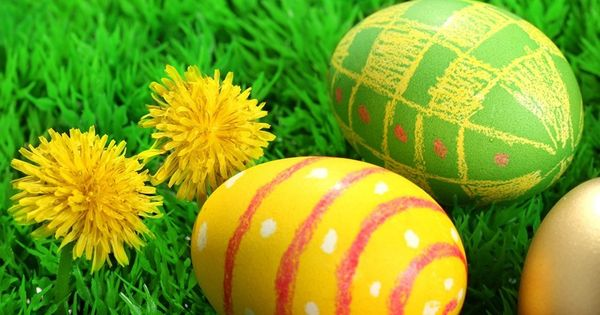 images sorry cancelled easter this year