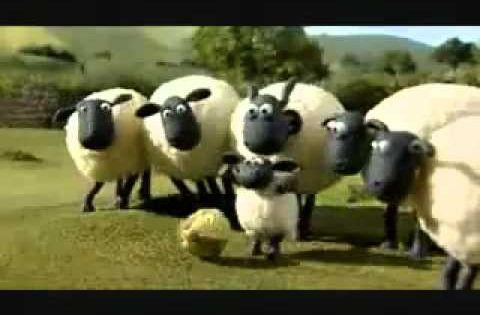 Shaun The Sheep Off The Baa خروف شون ذا شيب رائع Shaun The Sheep Sheep Shauns