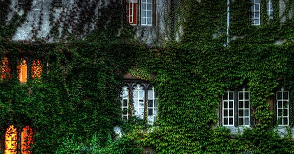 Opulent English style ivy covered home.