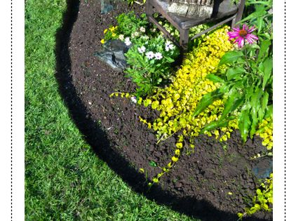 How to edge flower & garden beds
