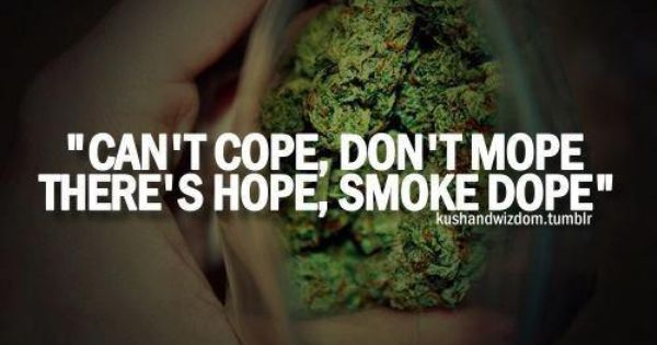Pin by Farhan Abbas on fly high | Pinterest | Smoking Weed ...