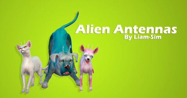 Alien Antennas Get Your Pets From Sixam Download Sfs No Ad Fly