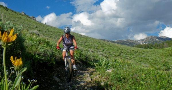 Mammoth Mountain Bike Rentals