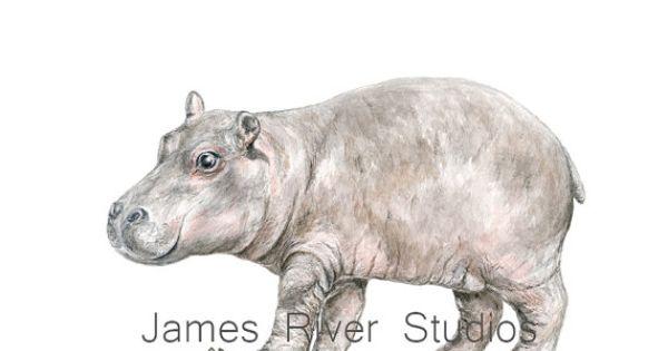 Hippo Art Hippo Painting Hippo Print Hippo Watercolor