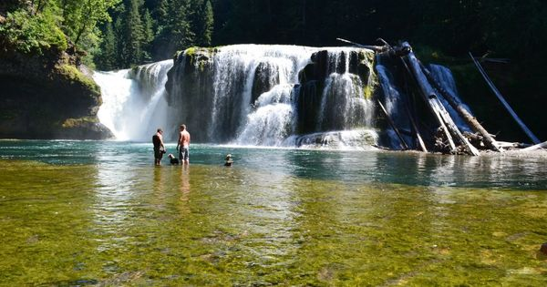 Lewis River Falls Trout Lake Washington Places