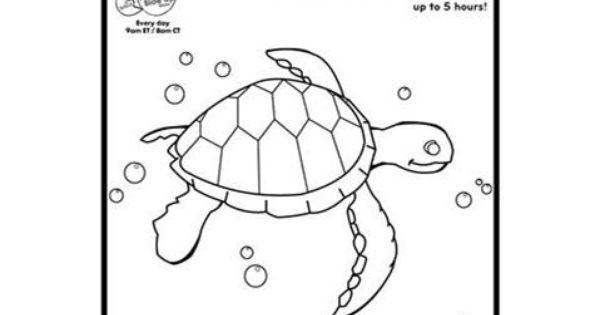 fish coloring pages pbs kids - photo#10