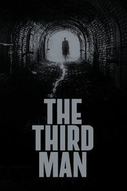 The Third Man The Third Man Man Movies Carol Reed