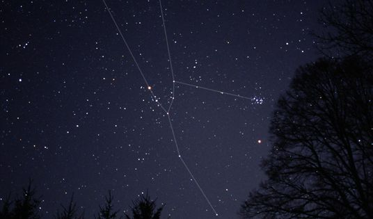 The Bull Taurus And Constellations On Pinterest