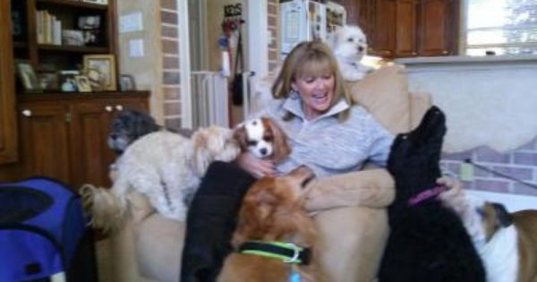 Hire Professional Mobile Pet Groomer Kathy Candler To Provide You Reliable Critter Care Work She Offers Pet Care Sitting Transpor Pet Care Pet Groomers Pets