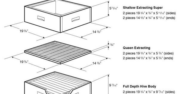Bee space is important traditional hive parts are made for Importance of space in architecture
