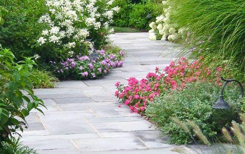 Garden Ideas, Landscaping ideas, pathway, walkway, bluestone, pathway, flowers, garden, oakleaf hydrangea,landscape