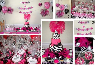 Hot Pink Zebra Diva Birthday Party Ideas