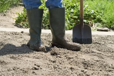 How to Create Well-Draining Soil (With images) | Soil, The hobbit,  Irrigation