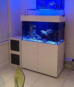 High Gloss White 3ft Steel Frame Marine Aquarium And Cabinet