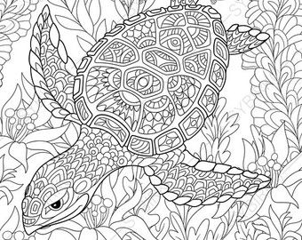 Adult Coloring Pages Turtle Zentangle Doodle Coloring Pages For