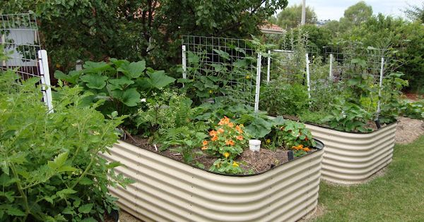 Great garden idea! Raised wicking bed instructions http://eatatdixiebelles.blogspot.com.au/2011/08/raised-wicking-worm-garden-bed.html?utm_source=feedburner&utm;_medium=feed&utm;_campaign=Feed:+blogspot/aklp+(eat+at+dixiebelle's)&utm;_content=Google+Reader