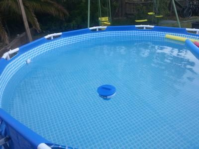 Swimming Pool Yellow Algae How To Remove Algae Pool Water Maintenance Vinyl Swimming Pool Swimming Pool Liners Swimming Pool Cost